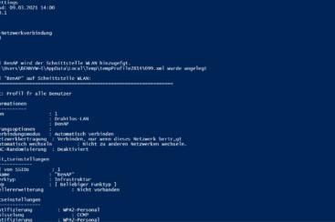 Powershell Netzwerk Interface Einstellungen